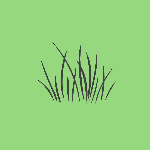Тест-ассоциация: какой вы цветок и на какое животное похожи