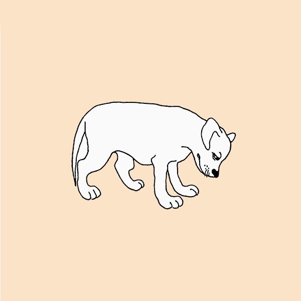 Тест «Помогите собаке»