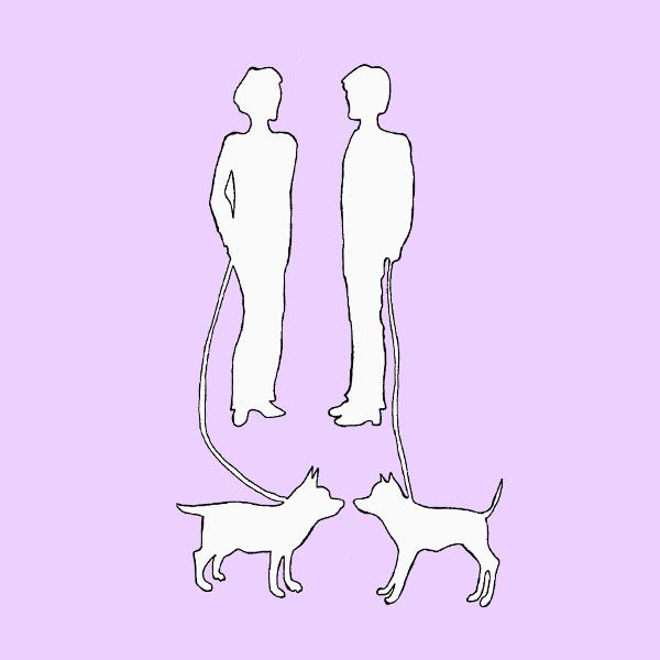 Тест «Прогулка с собакой»
